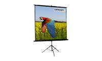 Celexon Economy tripod screen - Projection screen with tripod