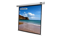 Celexon Economy electric screen - Projection screen